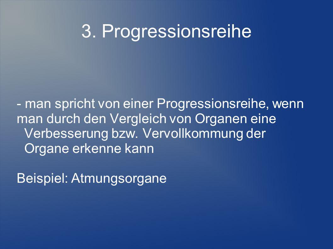 3. Progressionsreihe - man spricht von einer Progressionsreihe, wenn man durch den Vergleich von Organen eine Verbesserung bzw. Vervollkommung der Org