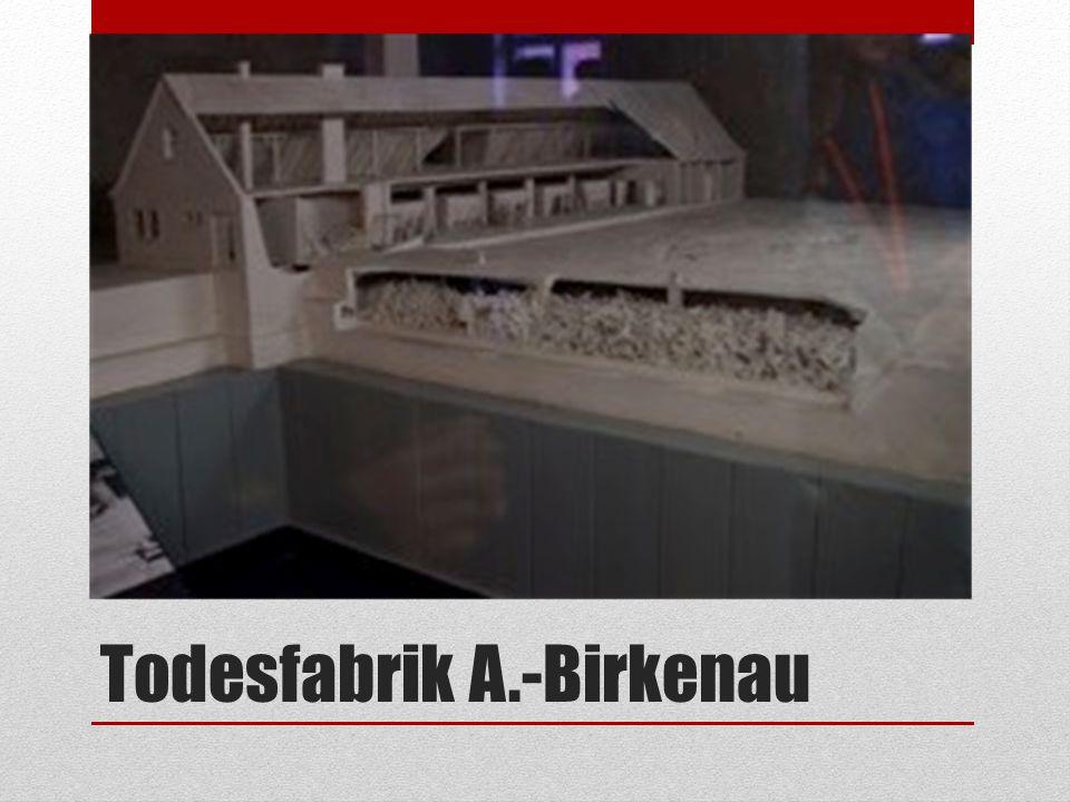 Todesfabrik A.-Birkenau