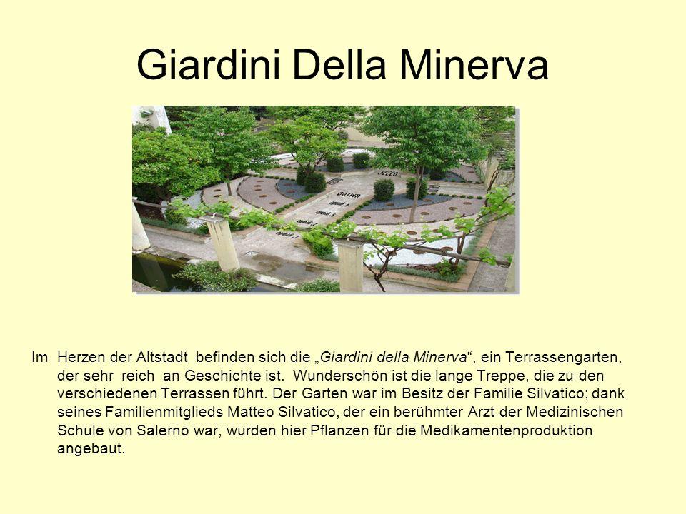 """Das Stadttheater Verdi In der Stadtmitte liegt das Stadttheater """"Verdi ."""