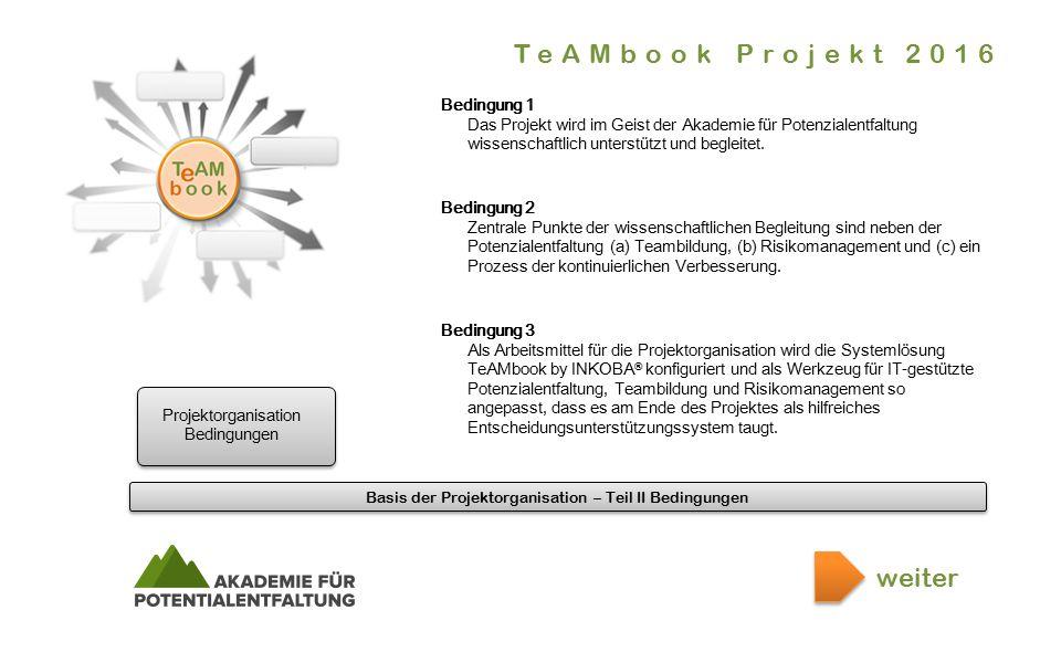 Basis der Projektorganisation – Teil II Bedingungen.er.