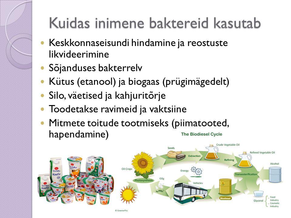 Kuidas inimene baktereid kasutab Keskkonnaseisundi hindamine ja reostuste likvideerimine Sõjanduses bakterrelv Kütus (etanool) ja biogaas (prügimägede