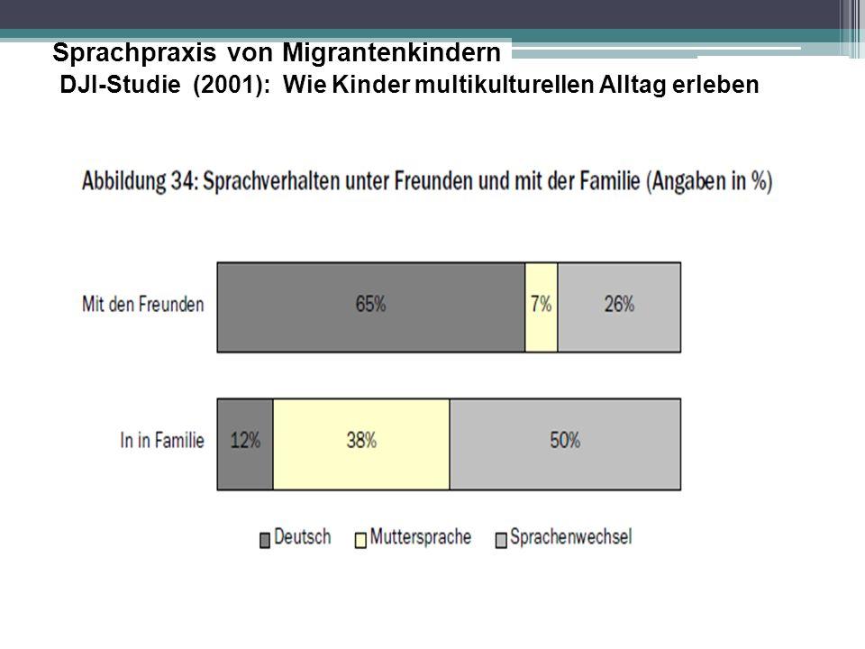 Sprachpraxis von Migrantenkindern DJI-Studie (2001): Wie Kinder multikulturellen Alltag erleben