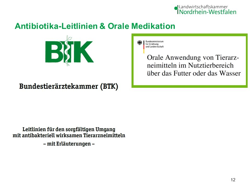 Antibiotika-Leitlinien & Orale Medikation 12