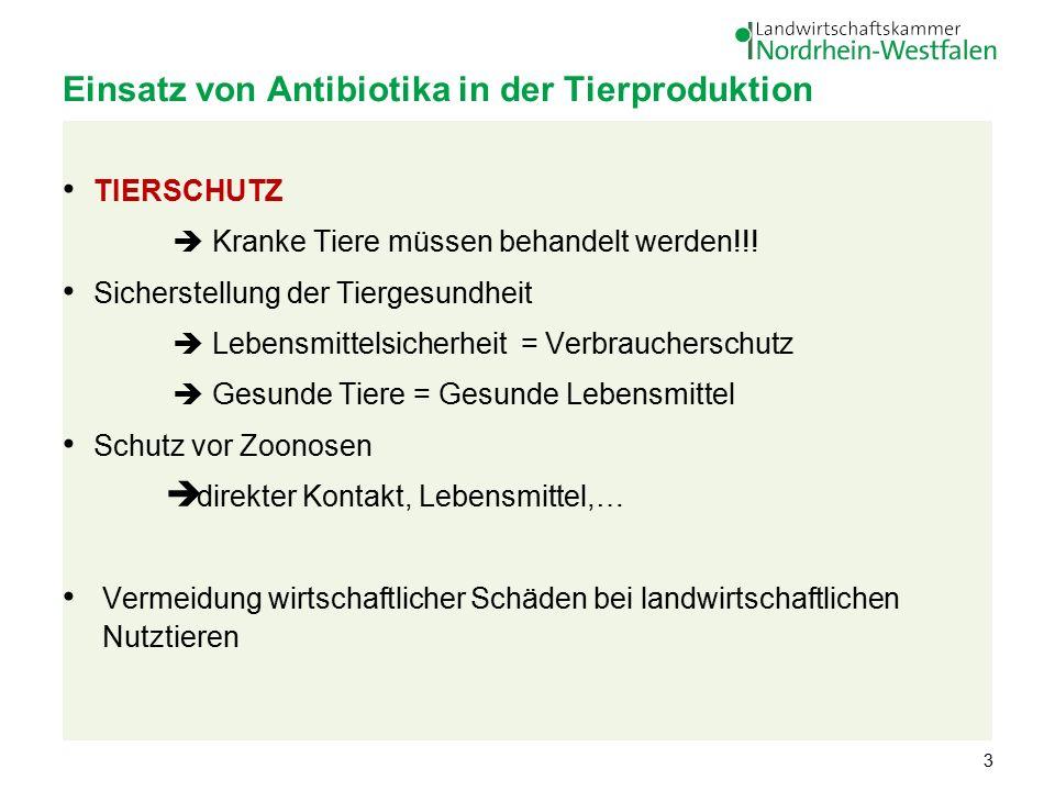 Einsatz von Antibiotika in der Tierproduktion TIERSCHUTZ  Kranke Tiere müssen behandelt werden!!.