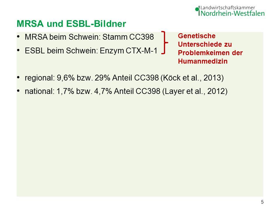 MRSA und ESBL-Bildner MRSA beim Schwein: Stamm CC398 ESBL beim Schwein: Enzym CTX-M-1 regional: 9,6% bzw.