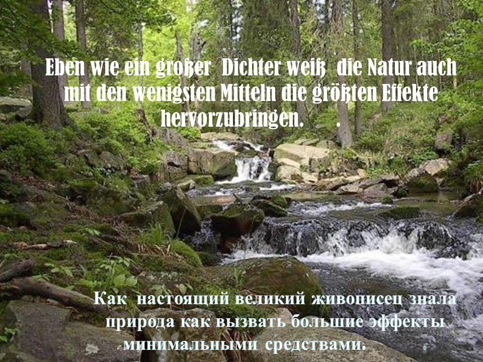 Eben wie ein großer Dichter weiß die Natur auch mit den wenigsten Mitteln die größten Effekte hervorzubringen..