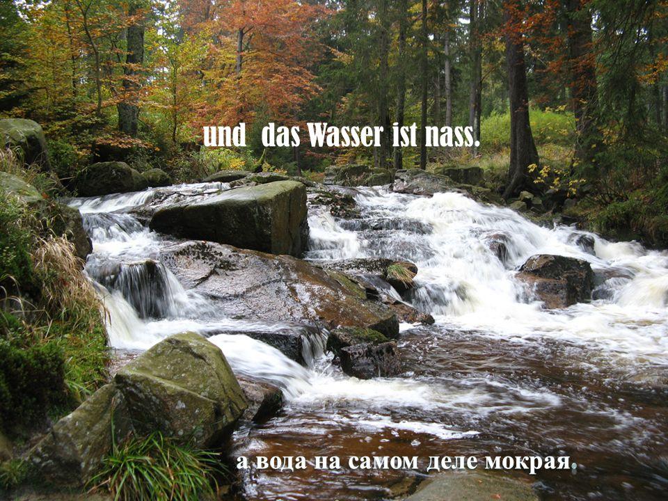 und das Wasser ist nass.