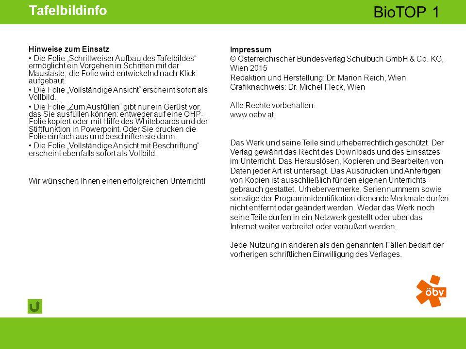 © Österreichischer Bundesverlag Schulbuch GmbH & Co KG | www.oebv.at BioTOP 1 Tafelbildinfo Impressum © Österreichischer Bundesverlag Schulbuch GmbH & Co.