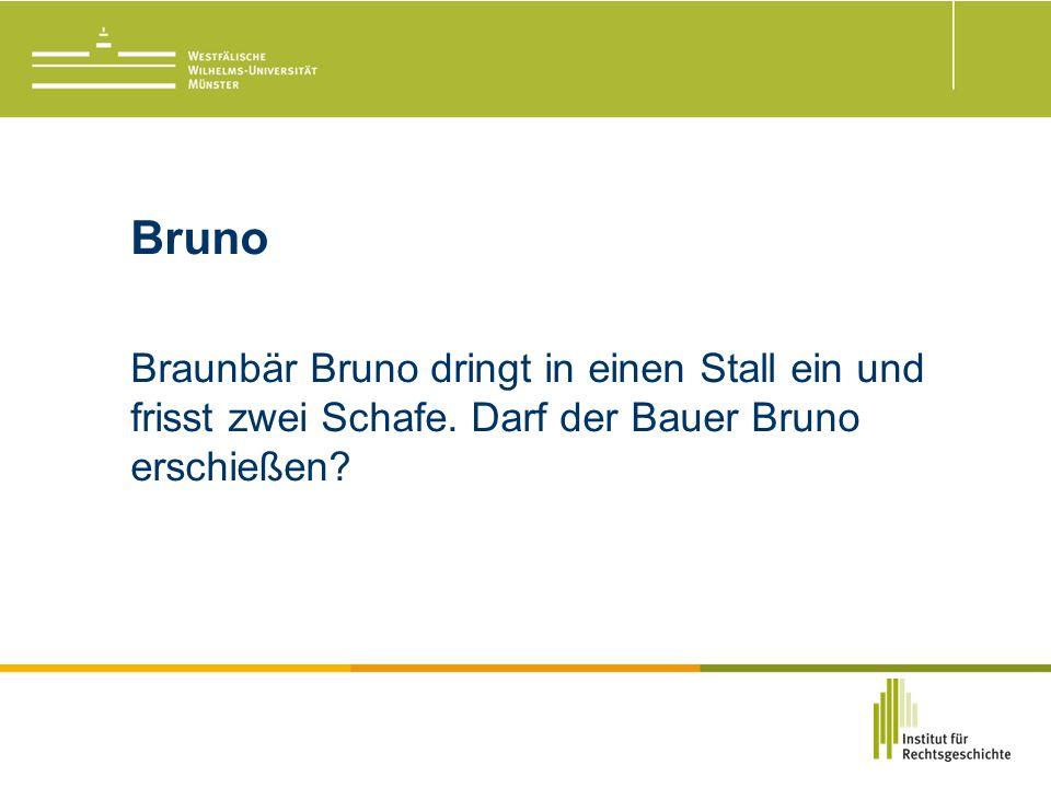Bruno Braunbär Bruno dringt in einen Stall ein und frisst zwei Schafe.