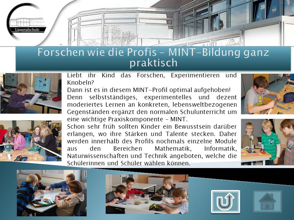 Für die Schüler besteht die Möglichkeit, im Mai 2012 am Big Challenge-Wettbewerb teilzunehmen.
