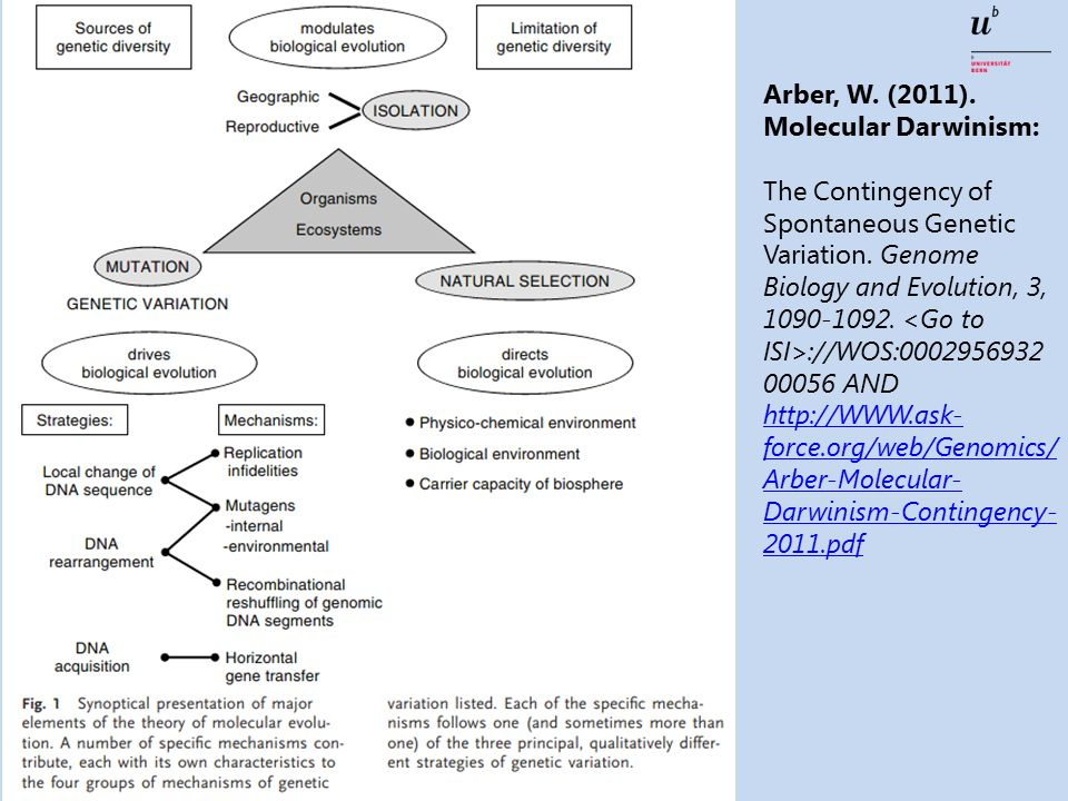 Arber, W. (2011). Molecular Darwinism: The Contingency of Spontaneous Genetic Variation.