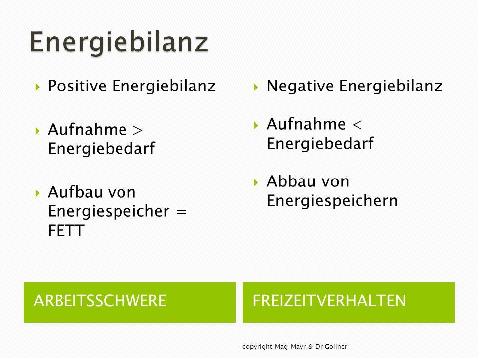 ARBEITSSCHWEREFREIZEITVERHALTEN  Positive Energiebilanz  Aufnahme > Energiebedarf  Aufbau von Energiespeicher = FETT  Negative Energiebilanz  Aufnahme < Energiebedarf  Abbau von Energiespeichern copyright Mag Mayr & Dr Gollner