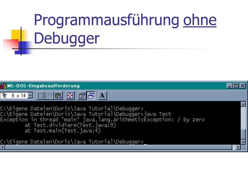 Programmausführung ohne Debugger