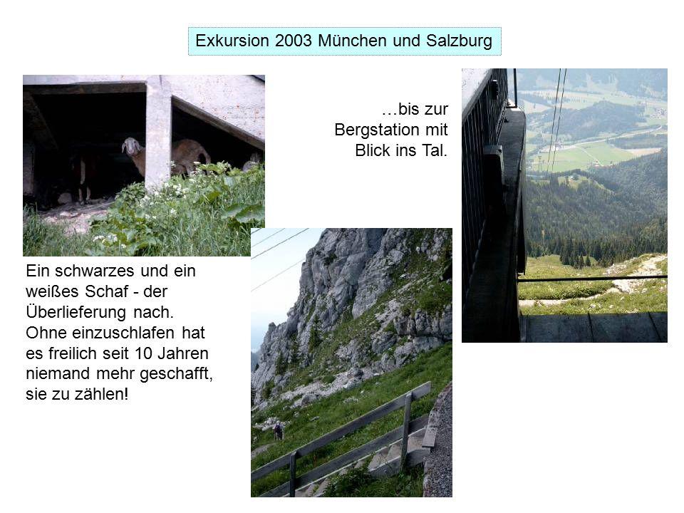 Exkursion 2003 München und Salzburg Ein schwarzes und ein weißes Schaf - der Überlieferung nach.
