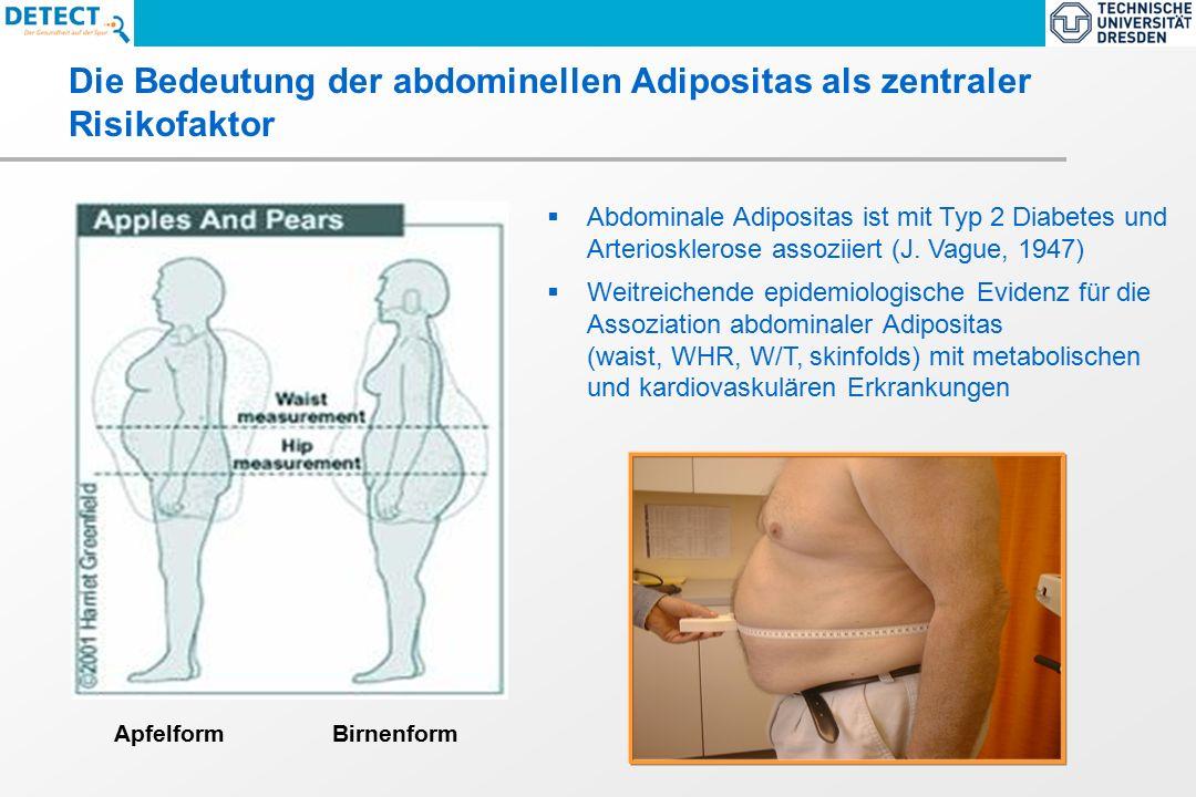  Abdominale Adipositas ist mit Typ 2 Diabetes und Arteriosklerose assoziiert (J.