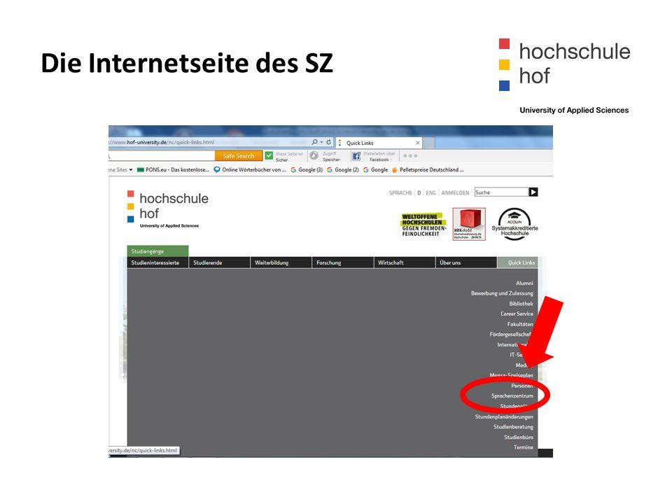 Die Internetseite des SZ