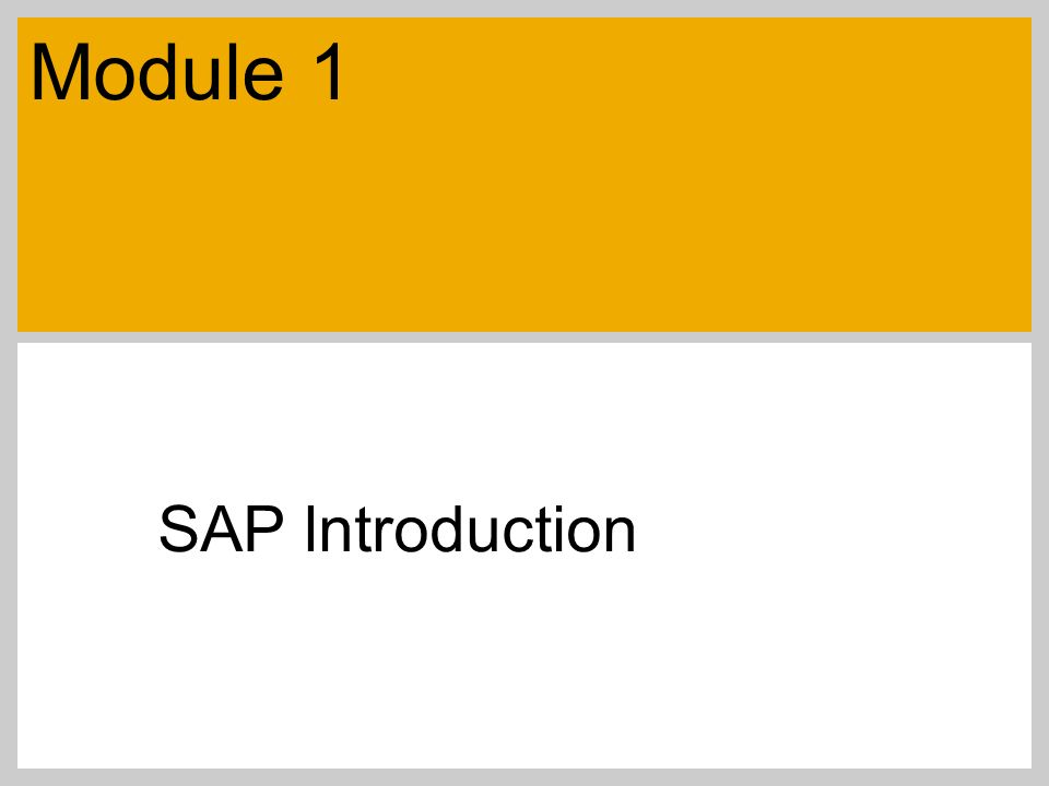 SAP lntroduction Module 1