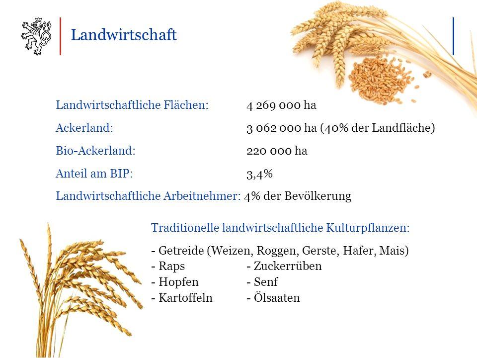 Landwirtschaft Landwirtschaftliche Flächen: 4 269 000 ha Ackerland: 3 062 000 ha (40% der Landfläche) Bio-Ackerland:220 000 ha Anteil am BIP: 3,4% Landwirtschaftliche Arbeitnehmer: 4% der Bevölkerung Traditionelle landwirtschaftliche Kulturpflanzen: - Getreide (Weizen, Roggen, Gerste, Hafer, Mais) - Raps - Zuckerrüben - Hopfen - Senf - Kartoffeln - Ölsaaten