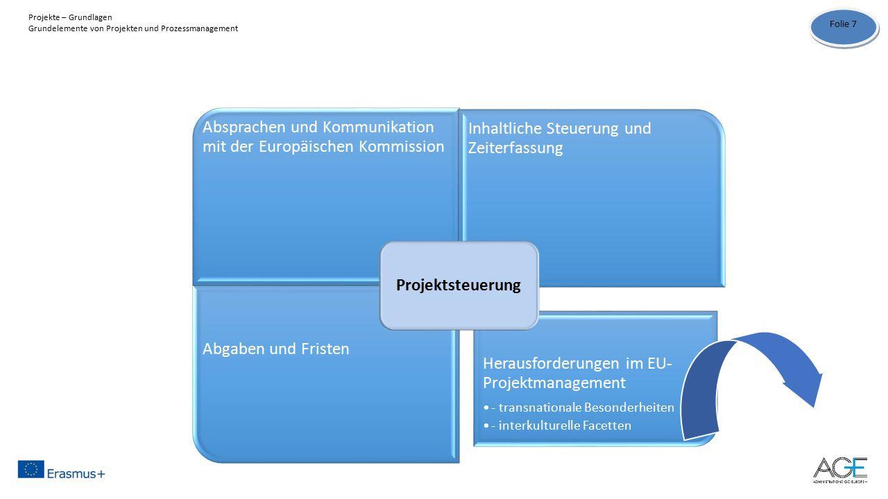 Absprachen und Kommunikation mit der Europäischen Kommission Inhaltliche Steuerung und Zeiterfassung Abgaben und Fristen Herausforderungen im EU- Projektmanagement - transnationale Besonderheiten - interkulturelle Facetten Projektsteuerung Folie 7 Projekte – Grundlagen Grundelemente von Projekten und Prozessmanagement