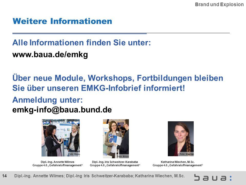 Alle Informationen finden Sie unter: www.baua.de/emkg Über neue Module, Workshops, Fortbildungen bleiben Sie über unseren EMKG-Infobrief informiert.