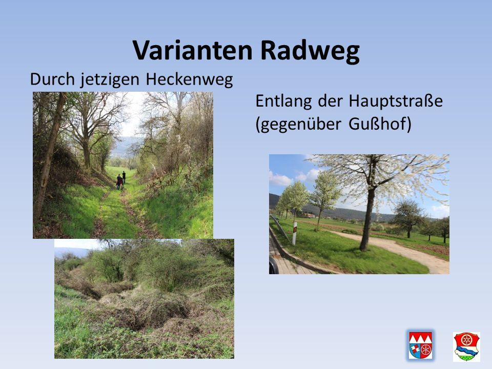 Varianten Radweg Durch jetzigen Heckenweg Entlang der Hauptstraße (gegenüber Gußhof)