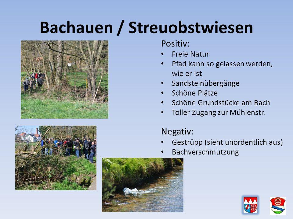 Positiv: Freie Natur Pfad kann so gelassen werden, wie er ist Sandsteinübergänge Schöne Plätze Schöne Grundstücke am Bach Toller Zugang zur Mühlenstr.