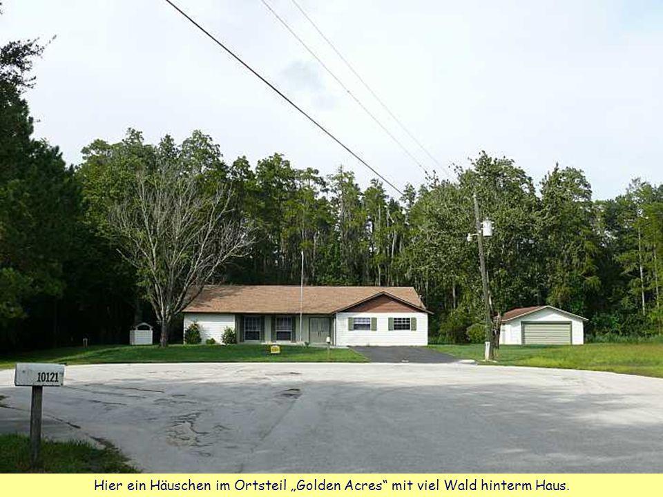 """Hier ein Häuschen im Ortsteil """"Golden Acres mit viel Wald hinterm Haus."""
