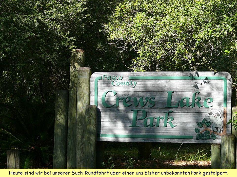 Heute sind wir bei unserer Such-Rundfahrt über einen uns bisher unbekannten Park gestolpert.