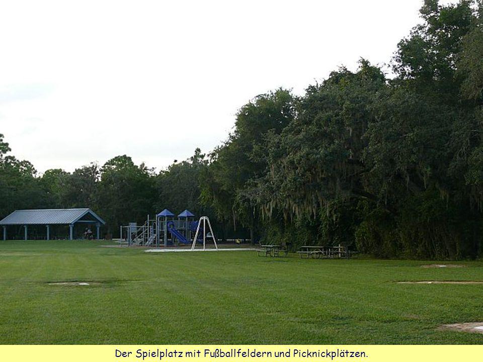 Der Spielplatz mit Fußballfeldern und Picknickplätzen.
