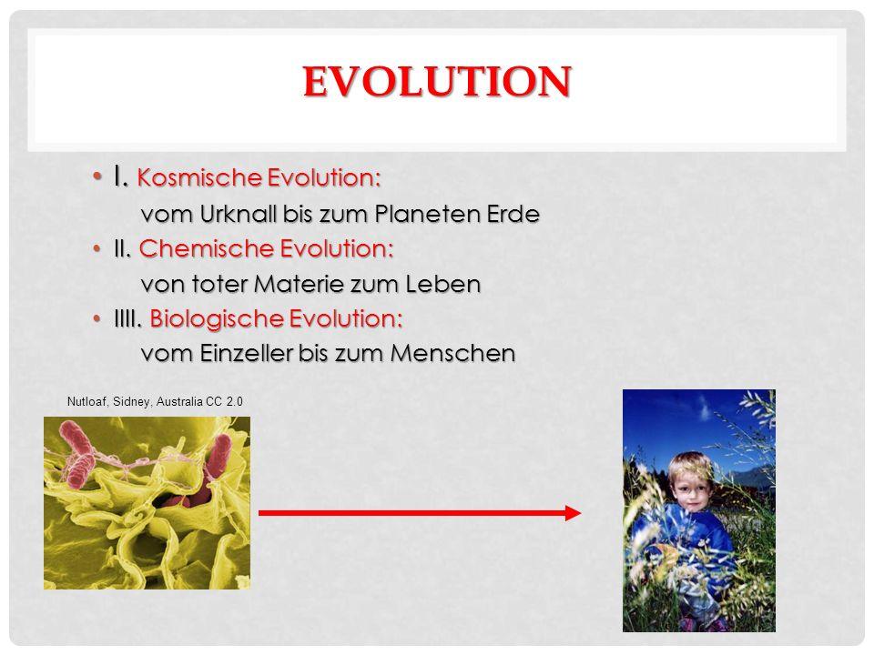 EVOLUTION I. Kosmische Evolution: I. Kosmische Evolution: vom Urknall bis zum Planeten Erde II.