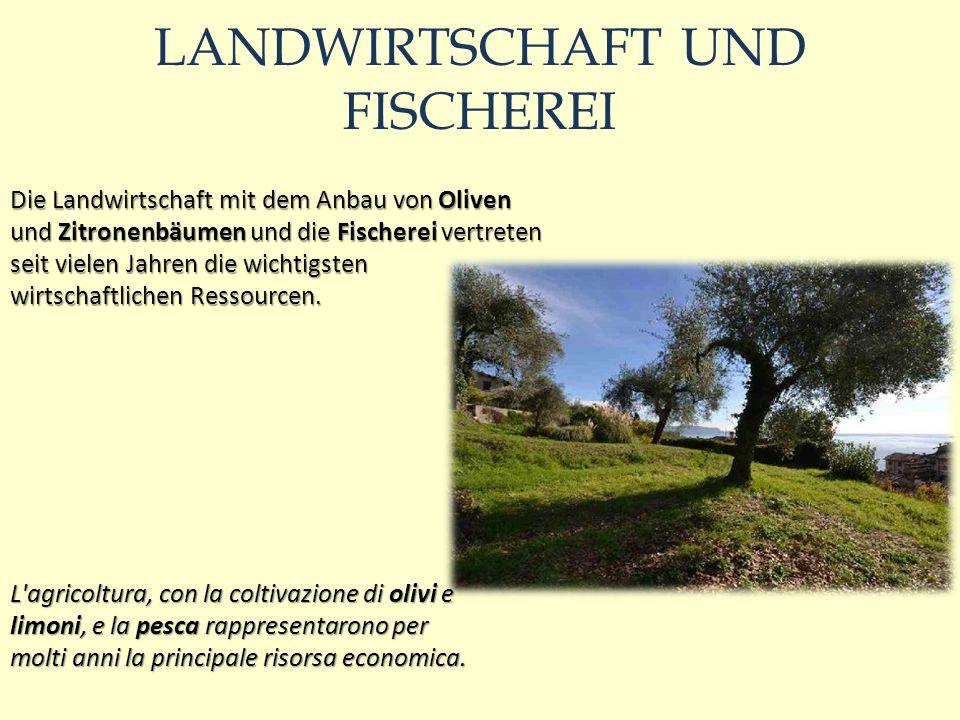 LANDWIRTSCHAFT UND FISCHEREI Die Landwirtschaft mit dem Anbau von Oliven und Zitronenbäumen und die Fischerei vertreten seit vielen Jahren die wichtigsten wirtschaftlichen Ressourcen.