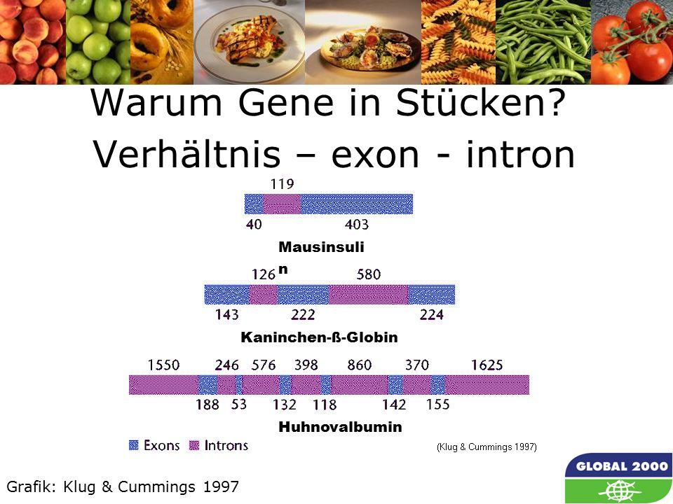 26 Warum Gene in Stücken.