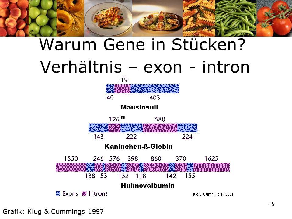 48 Warum Gene in Stücken.