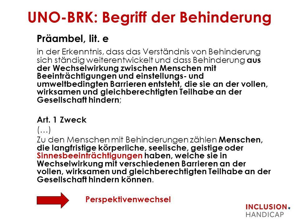 UNO-BRK: Begriff der Behinderung Präambel, lit.