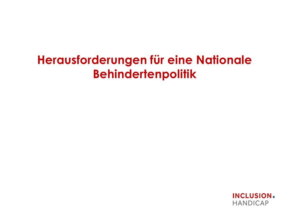 Herausforderungen für eine Nationale Behindertenpolitik