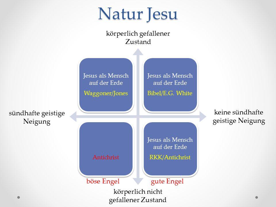 Natur Jesu Jesus als Mensch auf der Erde Waggoner/Jones Jesus als Mensch auf der Erde Bibel/E.G.