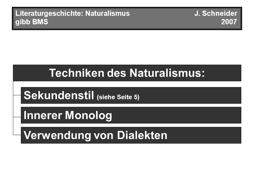 Techniken des Naturalismus: Literaturgeschichte: Naturalismus J.