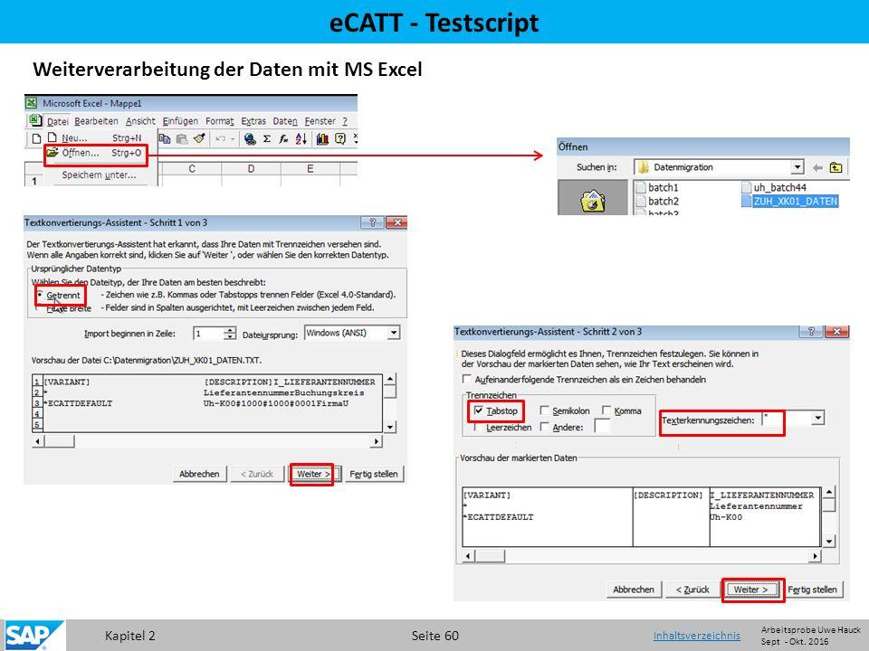 Kapitel 2 Seite 60 eCATT - Testscript Weiterverarbeitung der Daten mit MS Excel Inhaltsverzeichnis Arbeitsprobe Uwe Hauck Sept - Okt.