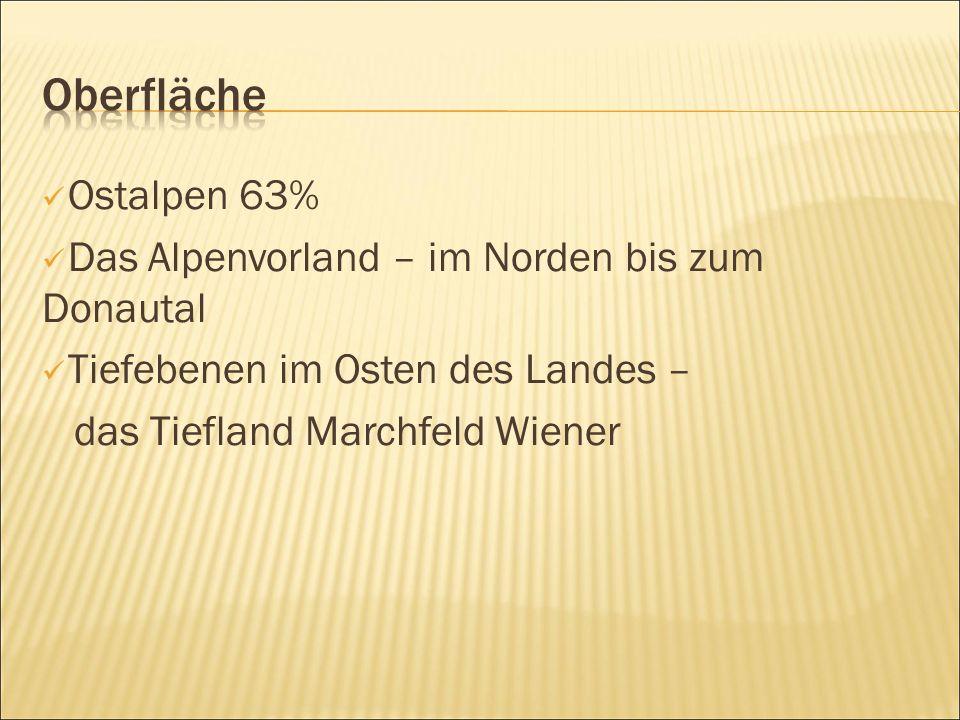 Ostalpen 63% Das Alpenvorland – im Norden bis zum Donautal Tiefebenen im Osten des Landes – das Tiefland Marchfeld Wiener