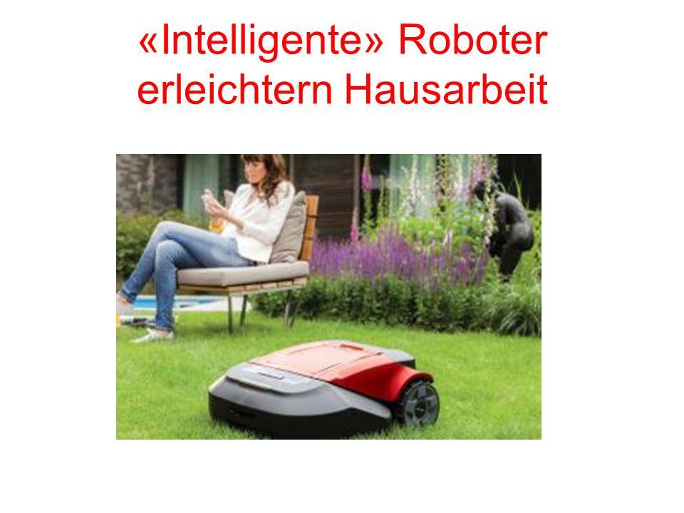 «Intelligente» Roboter erleichtern Hausarbeit