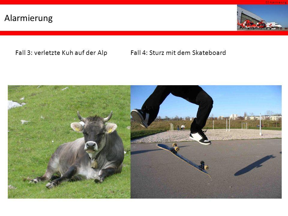 03 Alarmierung Alarmierung Fall 3: verletzte Kuh auf der AlpFall 4: Sturz mit dem Skateboard