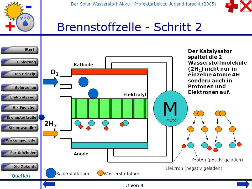 Einleitung Das Prinzip Solarzellen Start Elektrolyseur H - Speicher Brennstoffzelle Stromwandler Wirkungsgrade Für & Wieder Die Zukunft Quellen Der Solar-Wasserstoff-Akku - Projektarbeit zu Jugend forscht (2005) Brennstoffzelle - Schritt 1 PEM bedeutet : Polymer-Elektrolyt-Membran 2H 2 O2O2 M Kathode Anode Elektrolyt Wasserstoff (aus dem Tank / Speicher) und Sauerstoff aus der normalen Luft werden der Brennstoffzelle zugeführt.