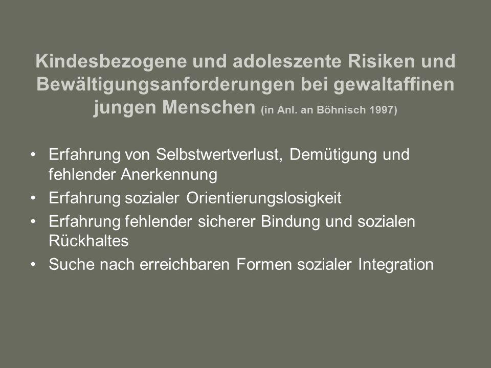 Kindesbezogene und adoleszente Risiken und Bewältigungsanforderungen bei gewaltaffinen jungen Menschen (in Anl.