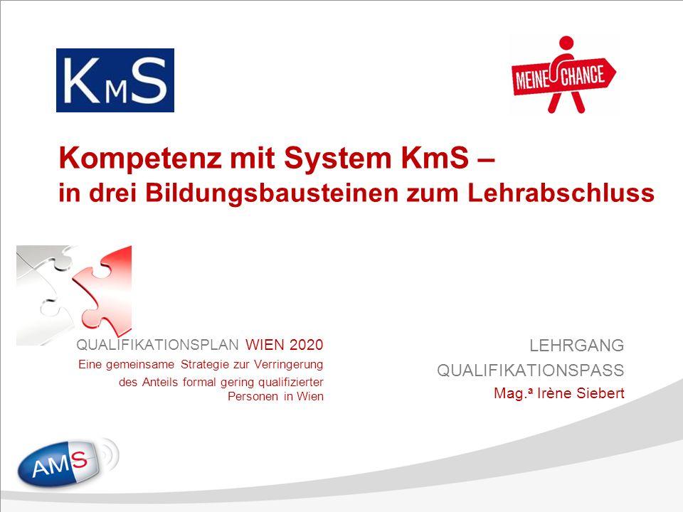 Kompetenz mit System KmS – in drei Bildungsbausteinen zum Lehrabschluss QUALIFIKATIONSPLAN WIEN 2020 Eine gemeinsame Strategie zur Verringerung des Anteils formal gering qualifizierter Personen in Wien LEHRGANG QUALIFIKATIONSPASS Mag.