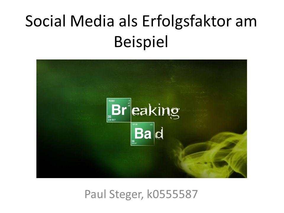 Social Media als Erfolgsfaktor am Beispiel Paul Steger, k0555587