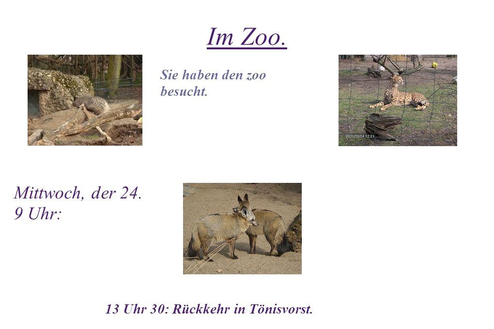 Im Zoo. Mittwoch, der 24. 9 Uhr: 13 Uhr 30: Rückkehr in Tönisvorst. Sie haben den zoo besucht.