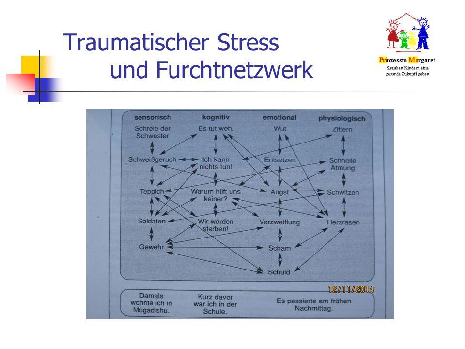 Traumatischer Stress und Furchtnetzwerk