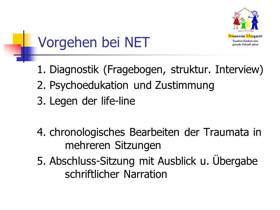 Vorgehen bei NET 1. Diagnostik (Fragebogen, struktur.