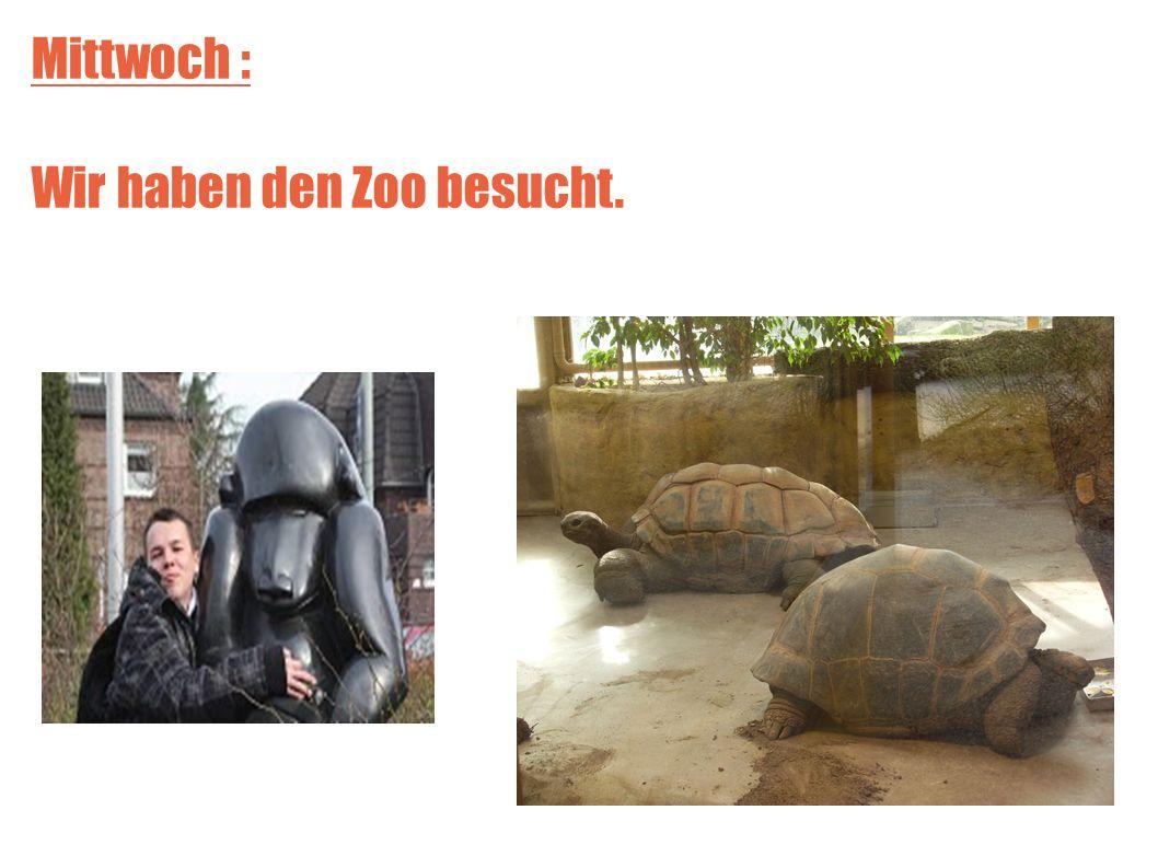 Mittwoch : Wir haben den Zoo besucht.
