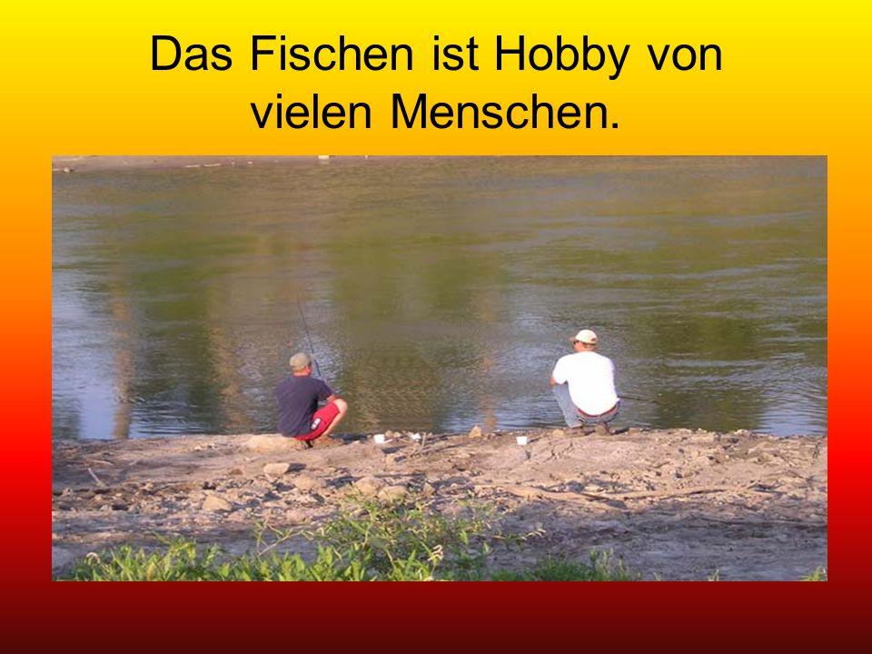 Das Fischen ist Hobby von vielen Menschen.